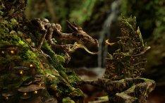 Dragon & Fire fairy