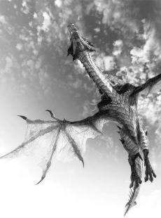 Dragon in sky black and white